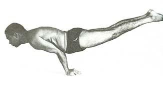 peacock-yoga